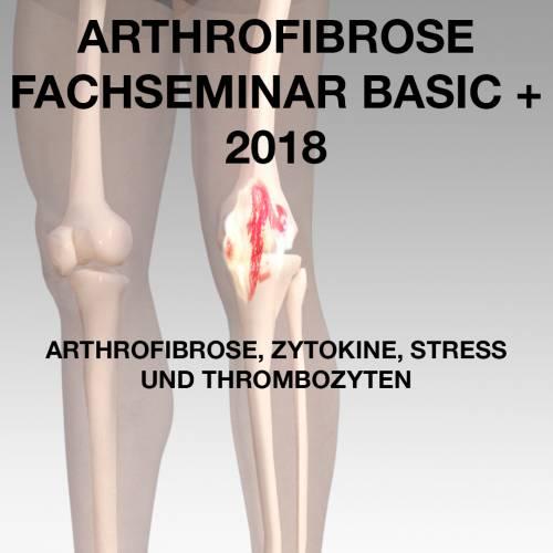 Arthrofibrose Fachseminar Basic+